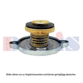 Sealing Cap, radiator -- AKS DASIS, Cap Radiator/ Metall, David Brown, ...