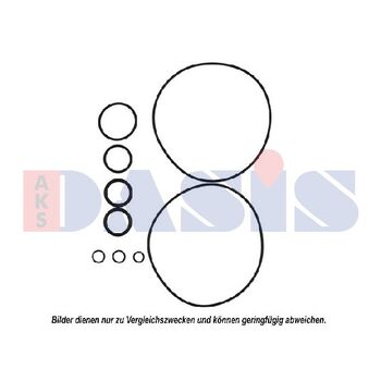 Seal Ring -- AKS DASIS, Clutch / coil cylinder head, Sealing ring...